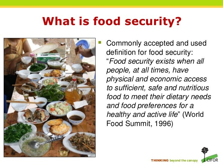 Food Security Summit