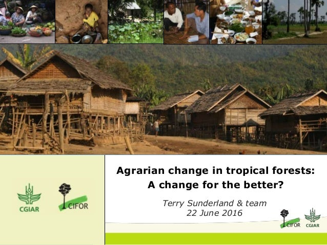 Agrarian change in tropical forests: A change for the better? Terry Sunderland & team 22 June 2016