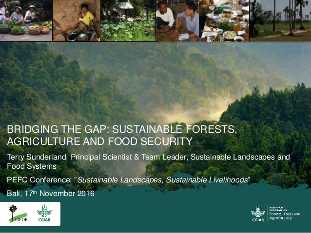 BRIDGING THE GAP: SUSTAINABLE FORESTS, AGRICULTURE AND FOOD SECURITY Terry Sunderland, Principal Scientist & Team Leader, ...