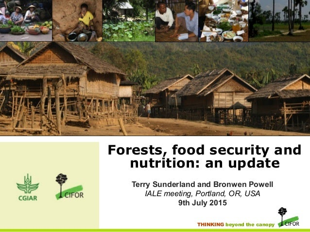 THINKING beyond the canopy Forests, food security and nutrition: an update Terry Sunderland and Bronwen Powell IALE meetin...