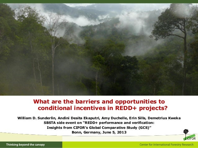 What are the barriers and opportunities toconditional incentives in REDD+ projects?William D. Sunderlin, Andini Desita Eka...
