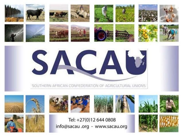 Participation des agriculteurs à des PPP : exemple concret et perspectives Briefing de Bruxelles n° 47 Bruxelles, Belgique...