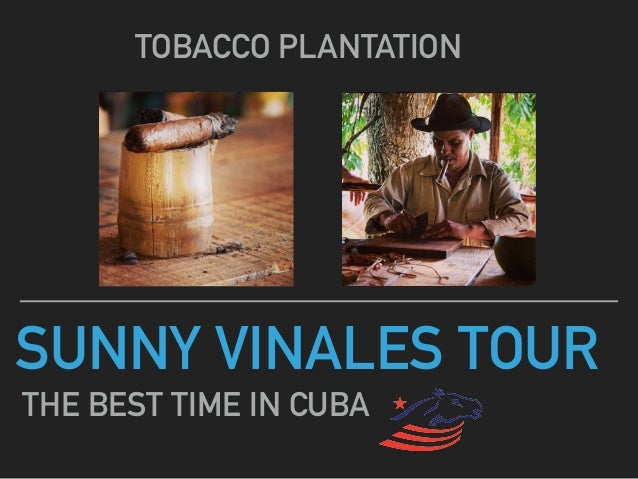 SUNNY VINALES TOUR TOBACCO PLANTATION THE BEST TIME IN CUBA