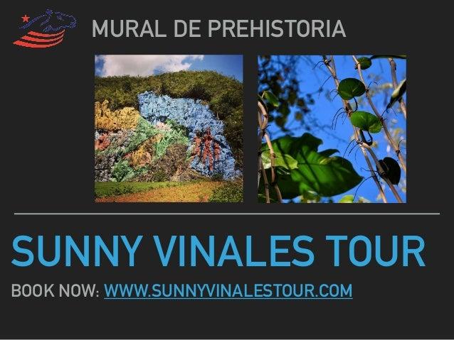 SUNNY VINALES TOUR MURAL DE PREHISTORIA BOOK NOW: WWW.SUNNYVINALESTOUR.COM