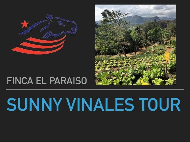 SUNNY VINALES TOUR FINCA EL PARAISO