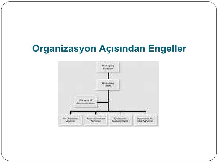 Organizasyon Açısından Engeller