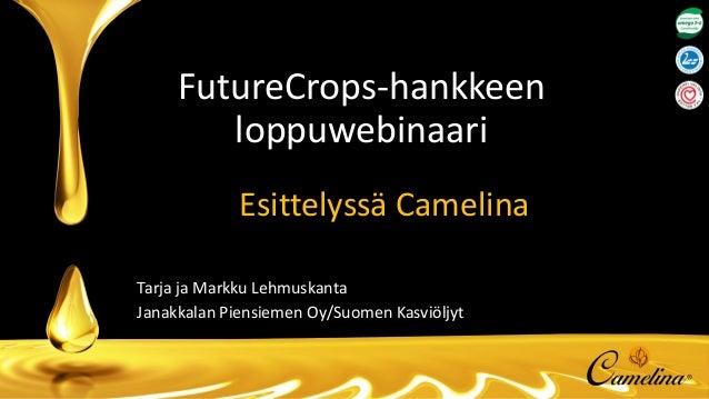 FutureCrops-hankkeen loppuwebinaari Esittelyssä Camelina Tarja ja Markku Lehmuskanta Janakkalan Piensiemen Oy/Suomen Kasvi...
