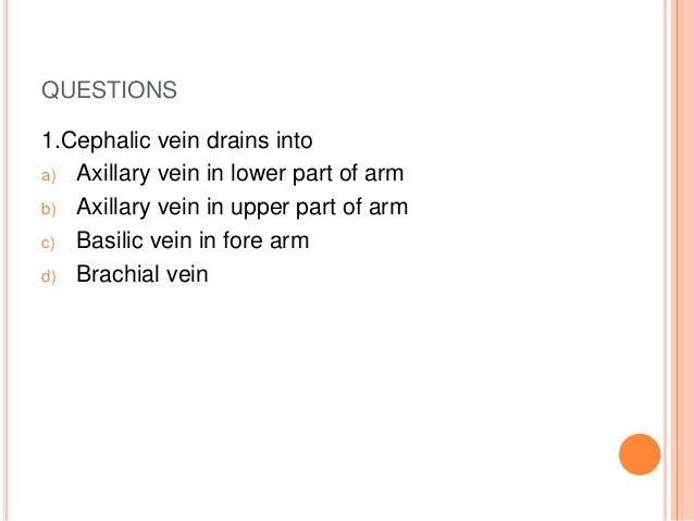venous & lymphatic drainage of upper limb, Cephalic Vein