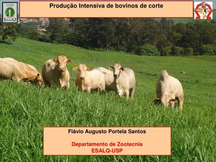 Produção Intensiva de bovinos de corte      Flávio Augusto Portela Santos       Departamento de Zootecnia              ESA...