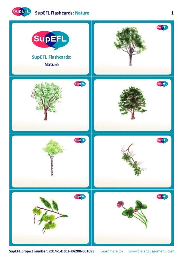 SupEFL Flashcards: Nature SupEFL project number: 2014-1-DE02-KA200-001093 Learnmera Oy www.thelanguagemenu.com 1 SupEFL Fl...