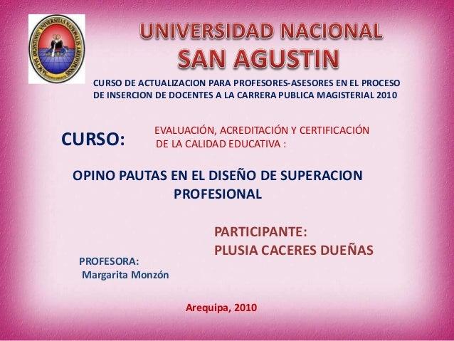 OPINO PAUTAS EN EL DISEÑO DE SUPERACION PROFESIONAL CURSO DE ACTUALIZACION PARA PROFESORES-ASESORES EN EL PROCESO DE INSER...
