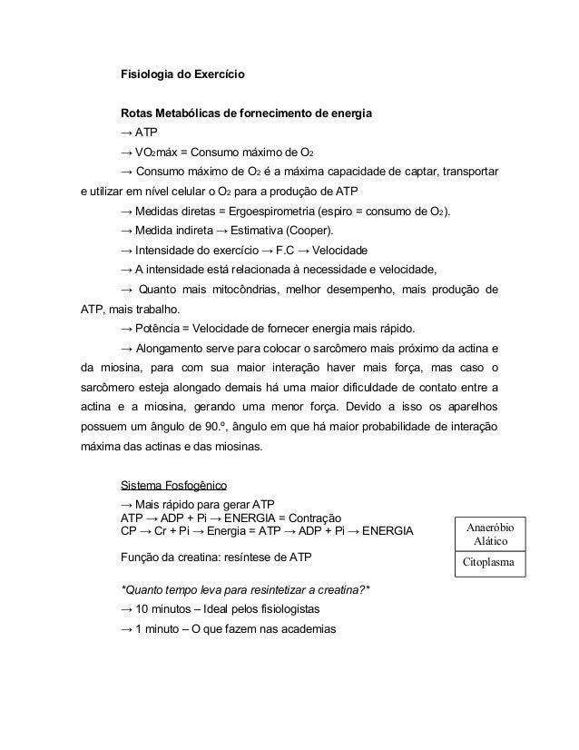 Fisiologia do Exercício Rotas Metabólicas de fornecimento de energia → ATP → VO2máx = Consumo máximo de O2 → Consumo máxim...
