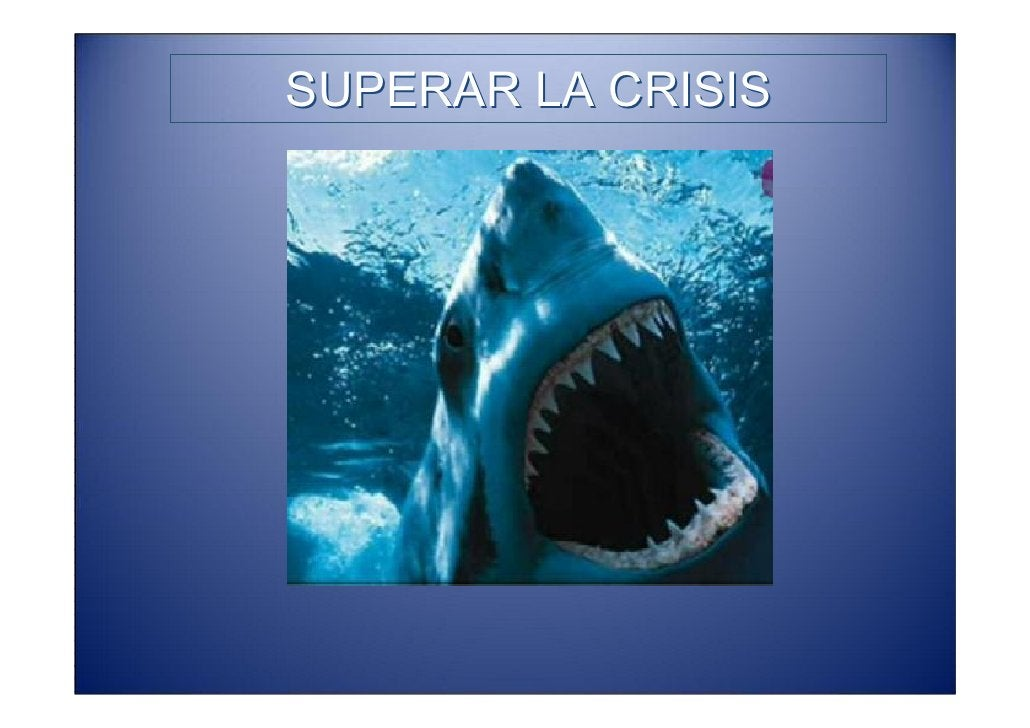 SUPERAR LA CRISIS • Hacer algo genuino, aprovechar las oportunidades del entorno y administrar los recursos de los que se ...