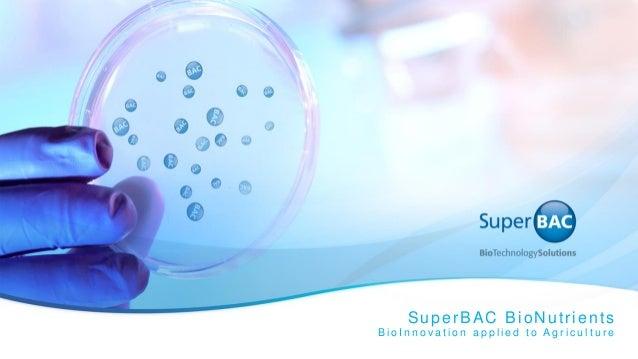 SuperBAC BioNutrients B i o I n n o v a t i o n a p p l i e d t o A g r i c u l t u r e