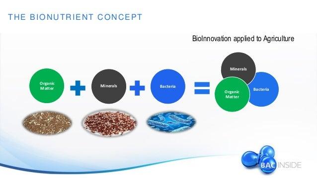 Триходерма Бленд — исследования биопрепарата в Бразилии (12.2014) Slide 2
