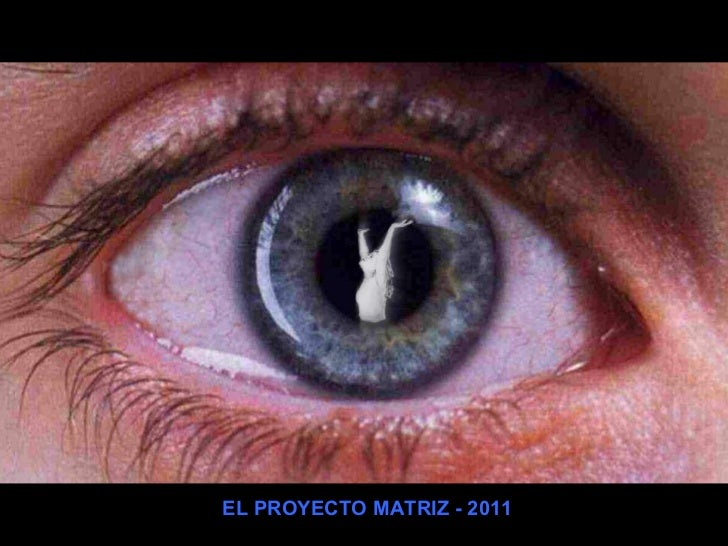 EL PROYECTO MATRIZ - 2011