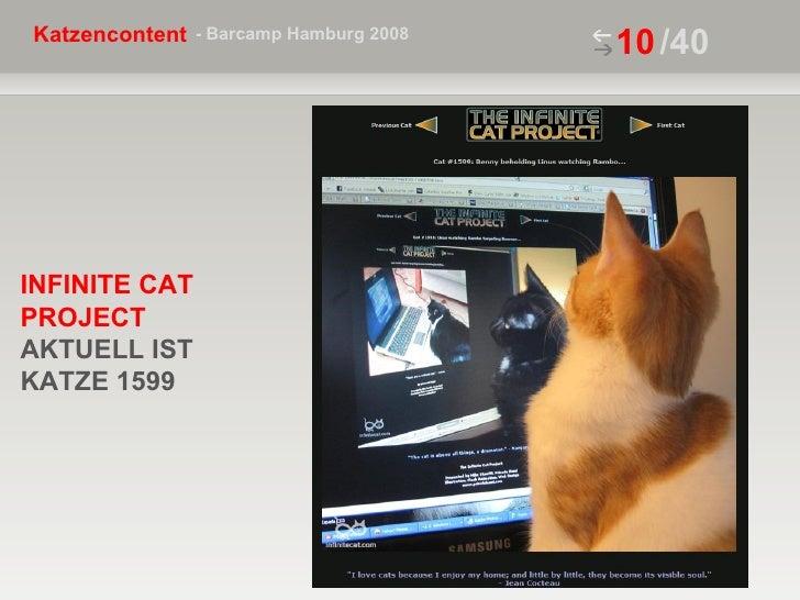 /40 INFINITE CAT PROJECT   AKTUELL IST KATZE 1599
