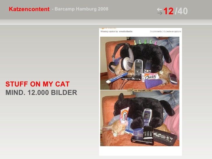 /40 STUFF ON MY CAT  MIND. 12.000 BILDER