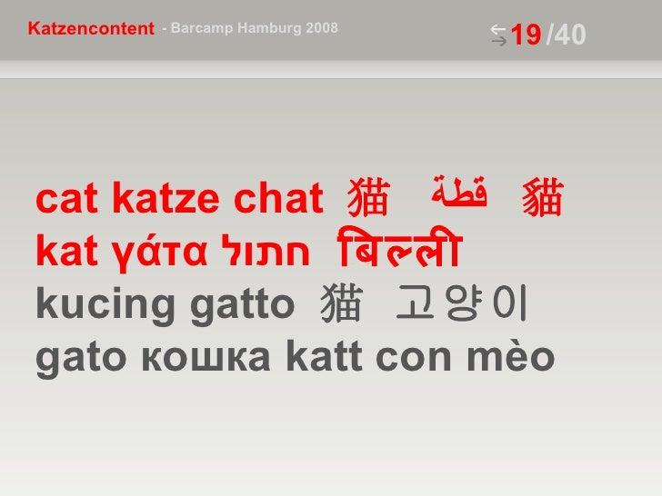 /40 cat katze chat  猫  قطة  貓  kat  γάτα  חתול  बिल्ली   kucing gatto  猫  고양이  gato  кошка  katt con mèo
