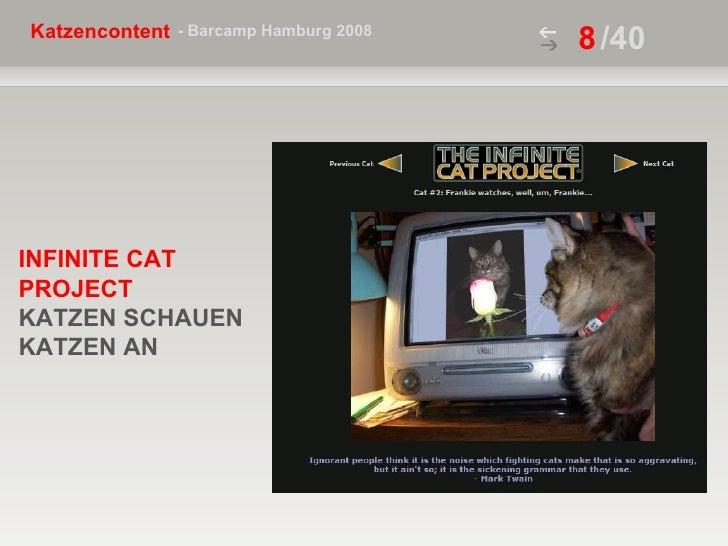 /40 INFINITE CAT PROJECT   KATZEN SCHAUEN  KATZEN AN