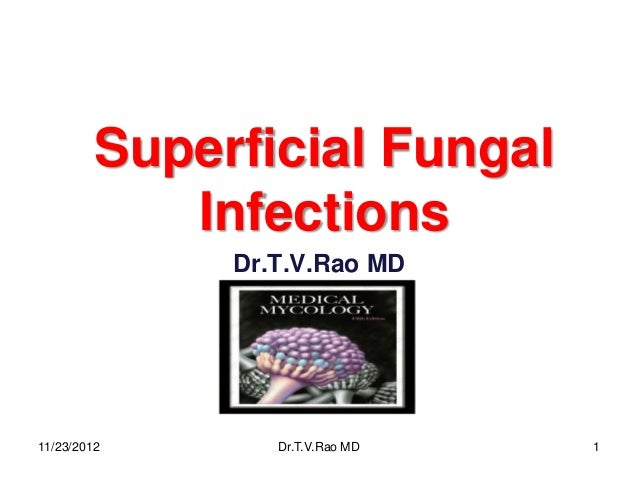 Superficial Fungal            Infections              Dr.T.V.Rao MD11/23/2012       Dr.T.V.Rao MD   1