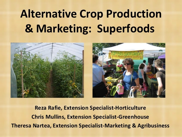 Alternative Crop Production & Marketing:  Superfoods  Reza Rafie, Extension Specialist-Horticulture Chris Mullins, Extensi...