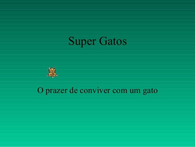 Super GatosO prazer de conviver com um gato