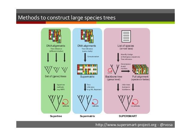 Self-Updating Platform for the Estimation of Rates of Speciation, Migration And Relationships of Taxa: SUPERSMART Slide 2