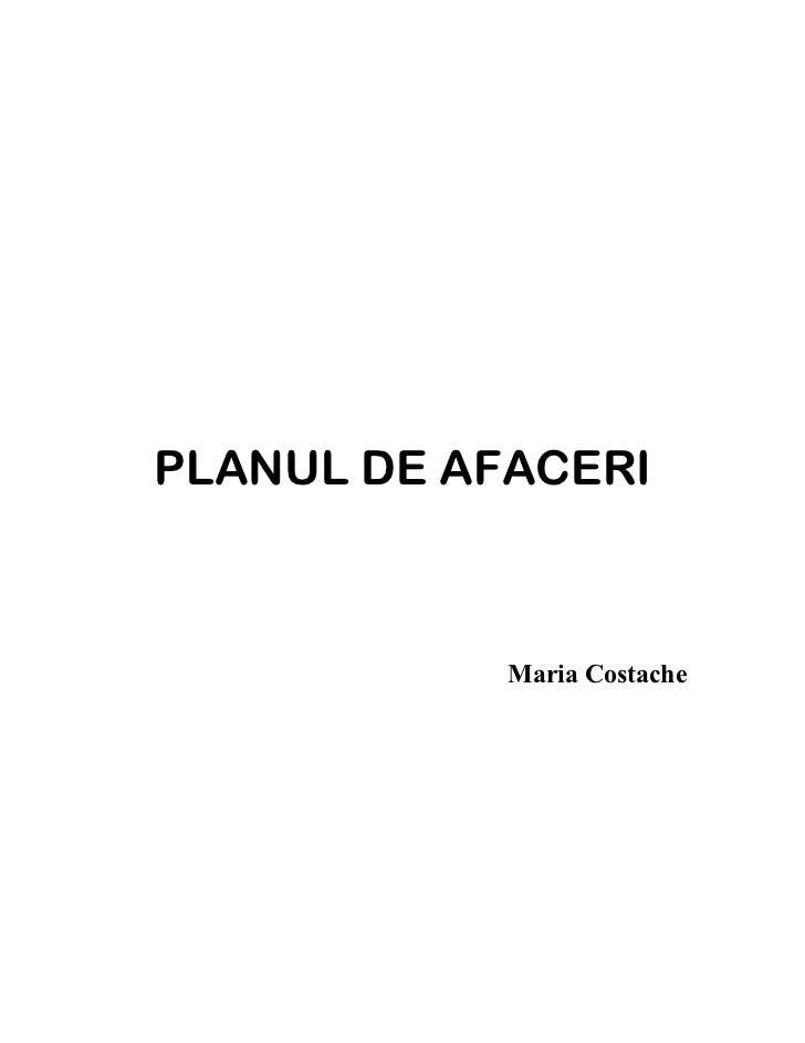 PLANUL DE AFACERI            Maria Costache