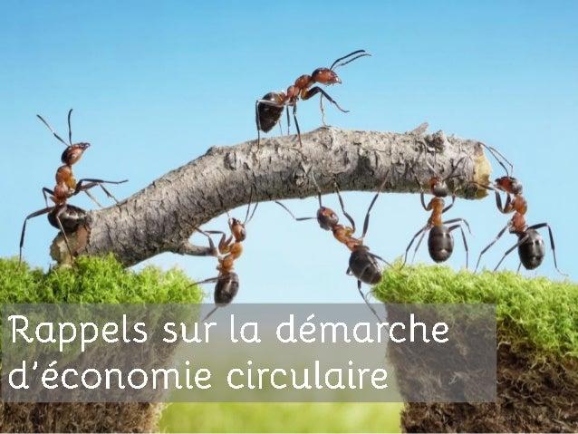 Atelier entreprises 25 juin 2014 - économie circulaire à impact positif Slide 3