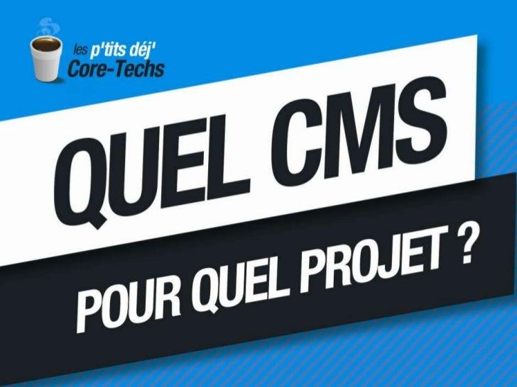 Quel CMS pour quel projet ?<br />Comment faire le bon choix et à quel coût ? Comment mener à bien un tel projet ?<br />ven...