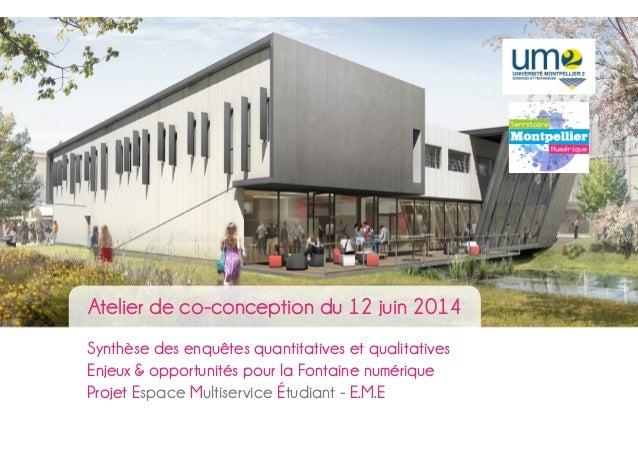 Atelier de co-conception du 12 juin 2014 Synthèse des enquêtes quantitatives et qualitatives Enjeux & opportunités pour la...