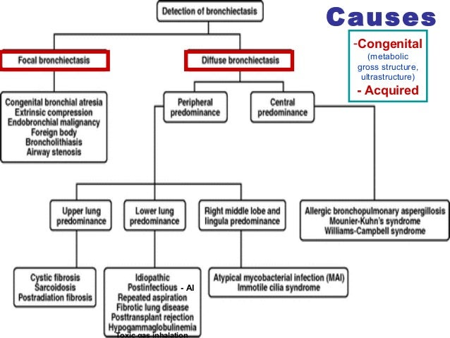 Suppurative lung diseases ccuart Choice Image