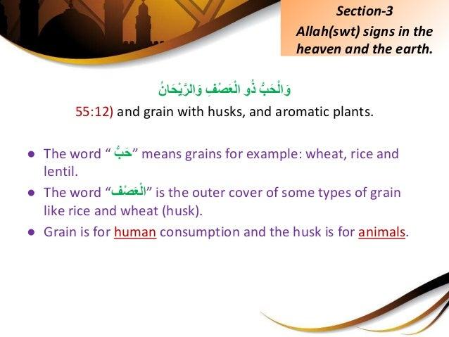 ِّبَحْلاَووُذِِّْفصَعْلاُِّانَحْيَّالرَو 55:12) and grain with husks, and aromatic plant...