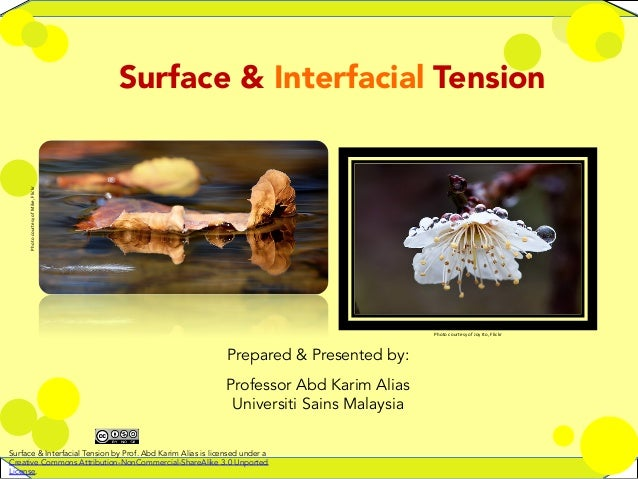 1   Surface & Interfacial Tension Photo  courtesy  of  Mike,  Flickr   Photo  courtesy  of  Joy  Ito,...