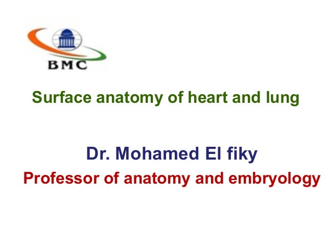 Surface anatomy of heart and lung Dr. Mohamed El fiky Professor of anatomy and embryology