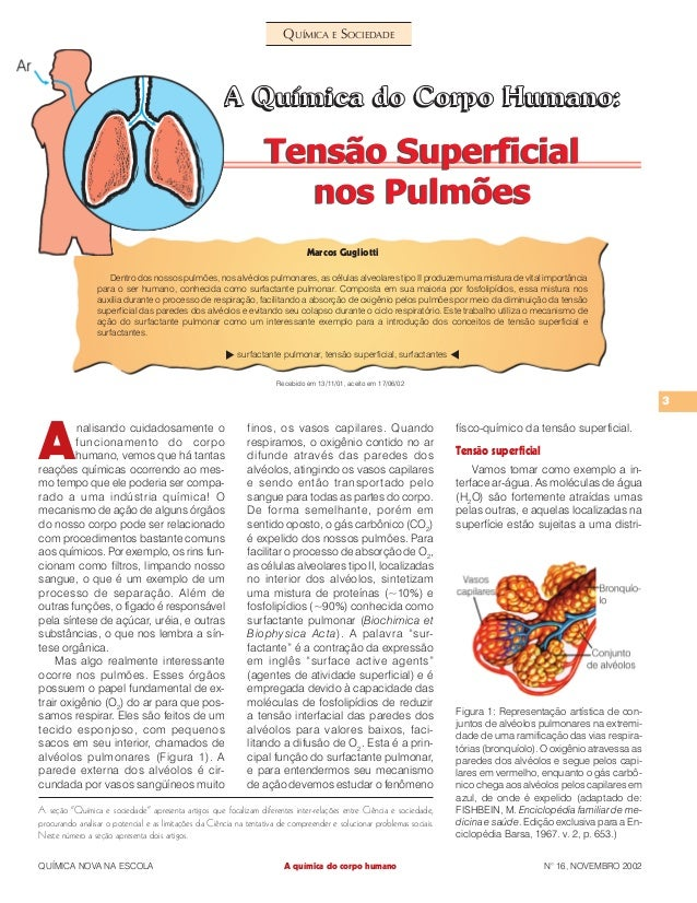 """3 QUÍMICA NOVA NA ESCOLA N° 16, NOVEMBRO 2002 QUÍMICA E SOCIEDADE A seção """"Química e sociedade"""" apresenta artigos que foca..."""