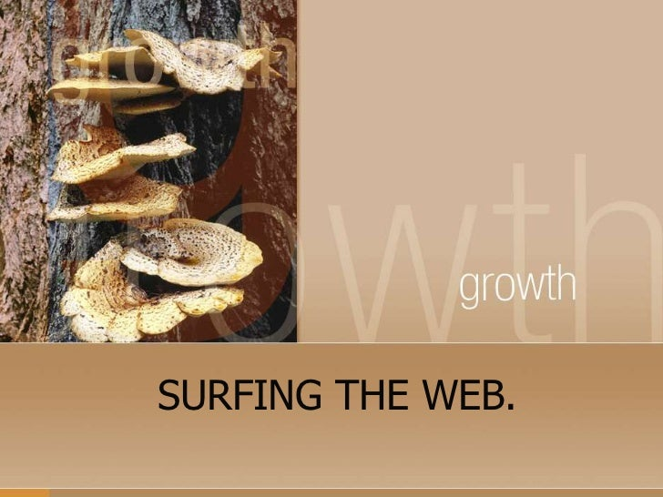 SURFING THE WEB.<br />