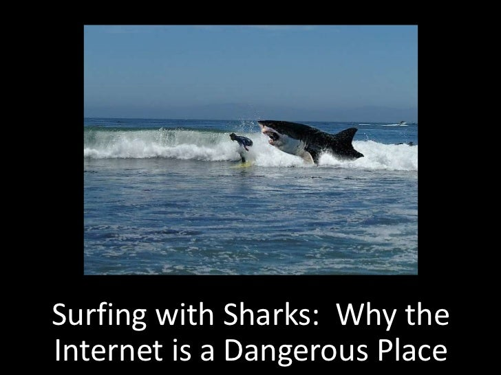 Surfing with Sharks: Why theInternet is a Dangerous Place