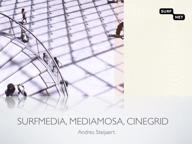 SURFMEDIA, MEDIAMOSA, CINEGRID             Andres Steijaert