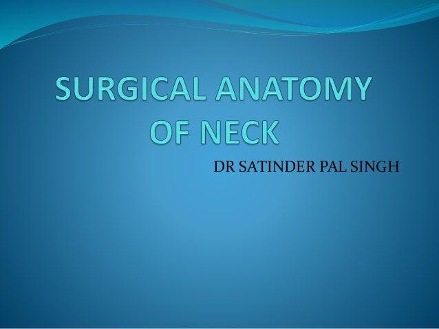 DR SATINDER PAL SINGH