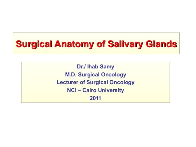 Surgical Anatomy of Salivary GlandsSurgical Anatomy of Salivary Glands Dr./ Ihab Samy M.D. Surgical Oncology Lecturer of S...