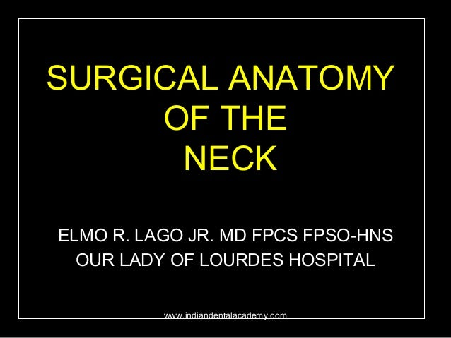 Surgical Anatomy Of The Head And Neck Certified Fixed Orthodontic C