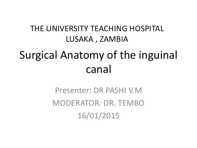 Surgical Anatomy of the inguinal canal Presenter: DR PASHI V.M MODERATOR: DR. TEMBO 16/01/2015 THE UNIVERSITY TEACHING HOS...