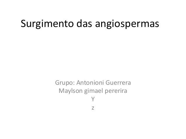 Surgimento das angiospermas Grupo: Antonioni Guerrera Maylson gimael pererira Y z