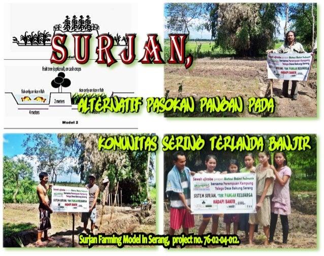 Surjan  pdf slide show