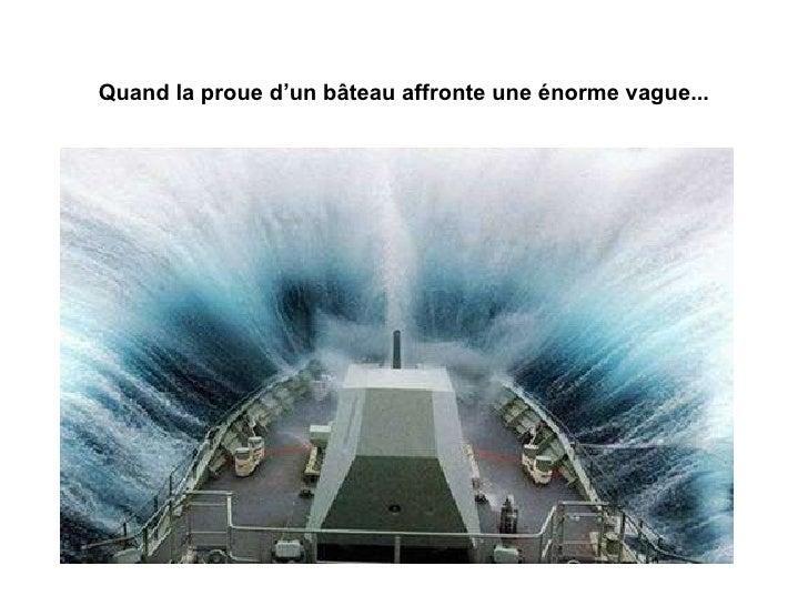 Sur Le Vif  Slide 2
