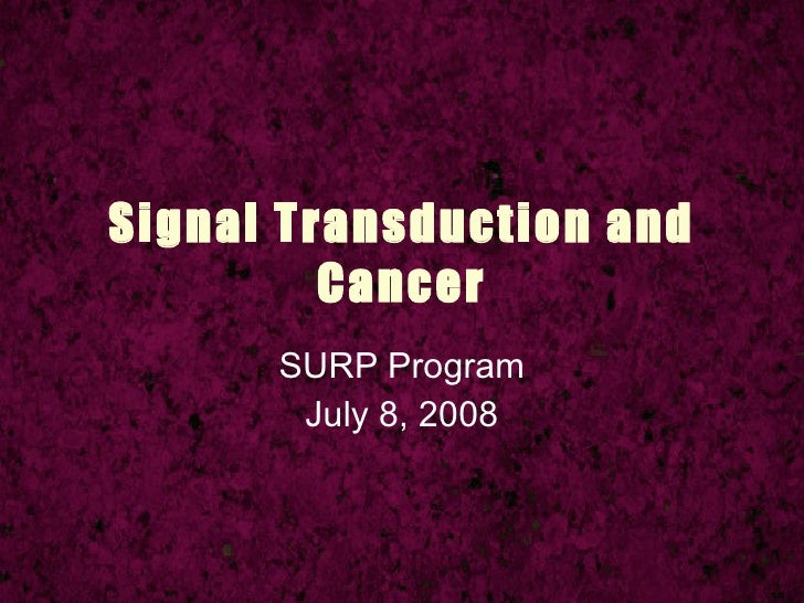 Signal Transduction and          Cancer       SURP Program        July 8, 2008