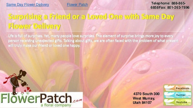 Same Day Flower Delivery              Flower Patch                                         Telephone: 888-865-            ...