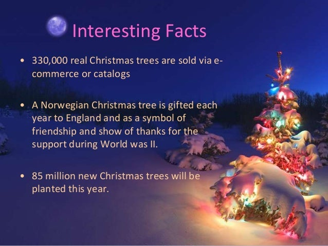 Interesting Facts About Christmas.Amazingly Christmas Tree Facts To Know